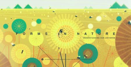 """Inspiração // """"Forms in Nature"""" – curta de animação"""